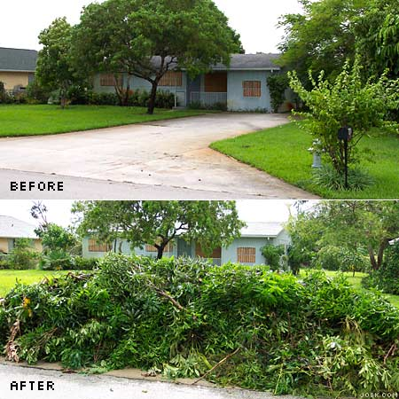 Photo of front yard before and after Hurricane Frances.